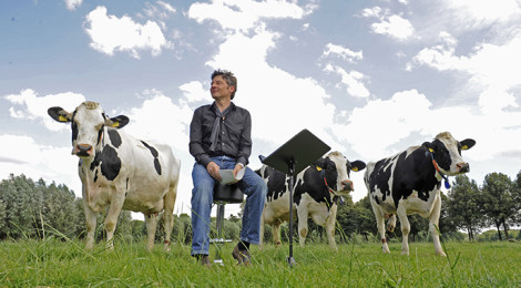 Stefan Verhasselt sitzt vor Kühen